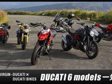 DUCATI6モデル一気乗りの画像
