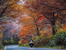 「The Great Japan Roadtrip」ムルティストラーダで日本一周の画像